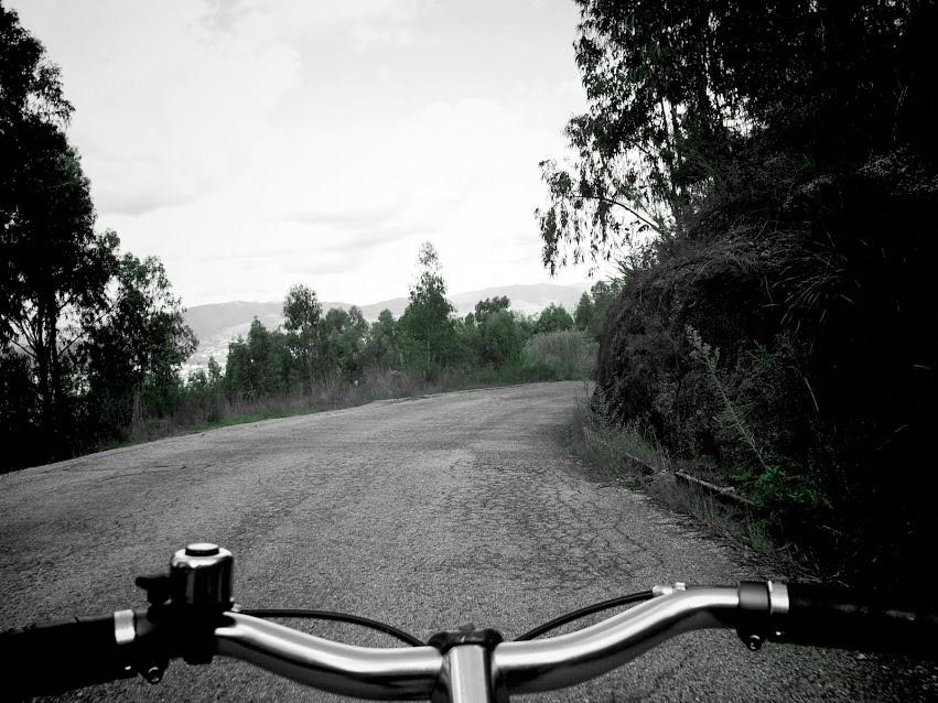 Bicicleta à flor da pele…
