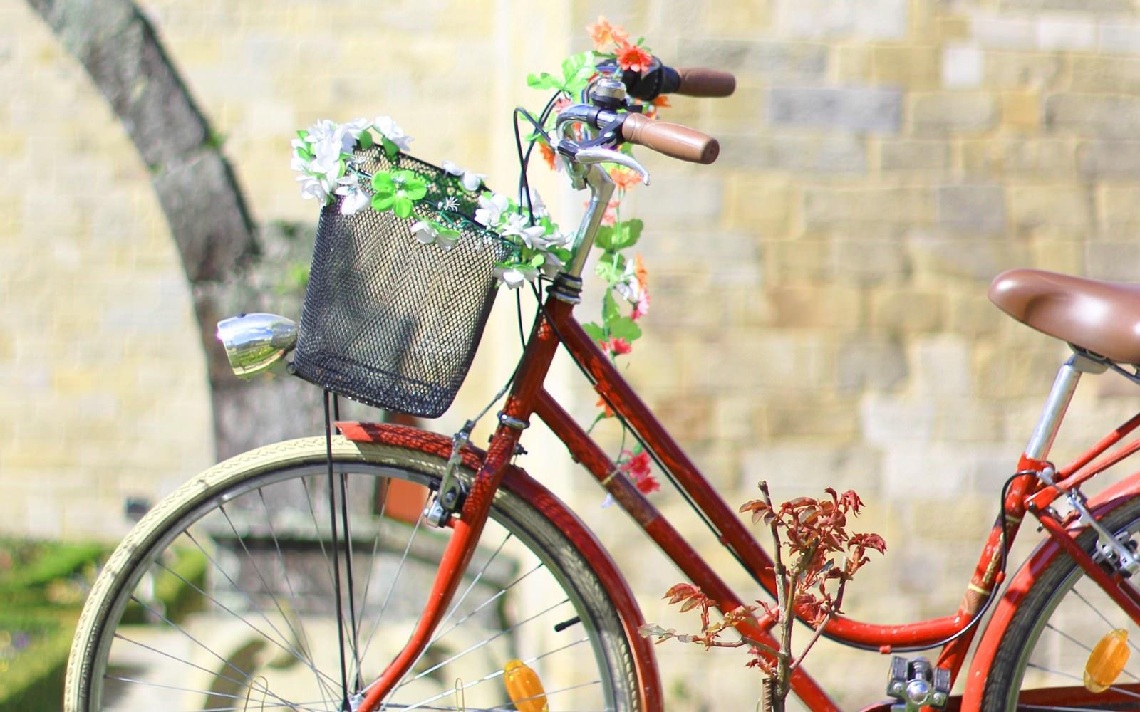 IV Braga Cycle Chic