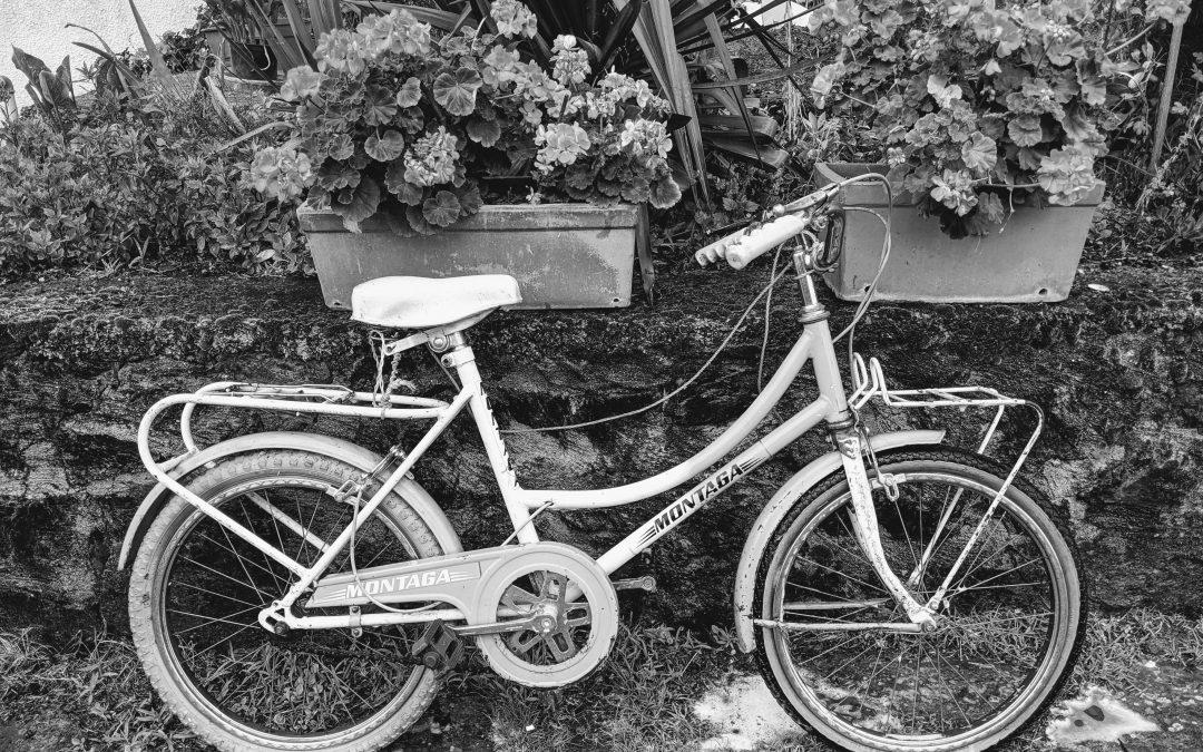 Uma viagem até ao mundo das bicicletas