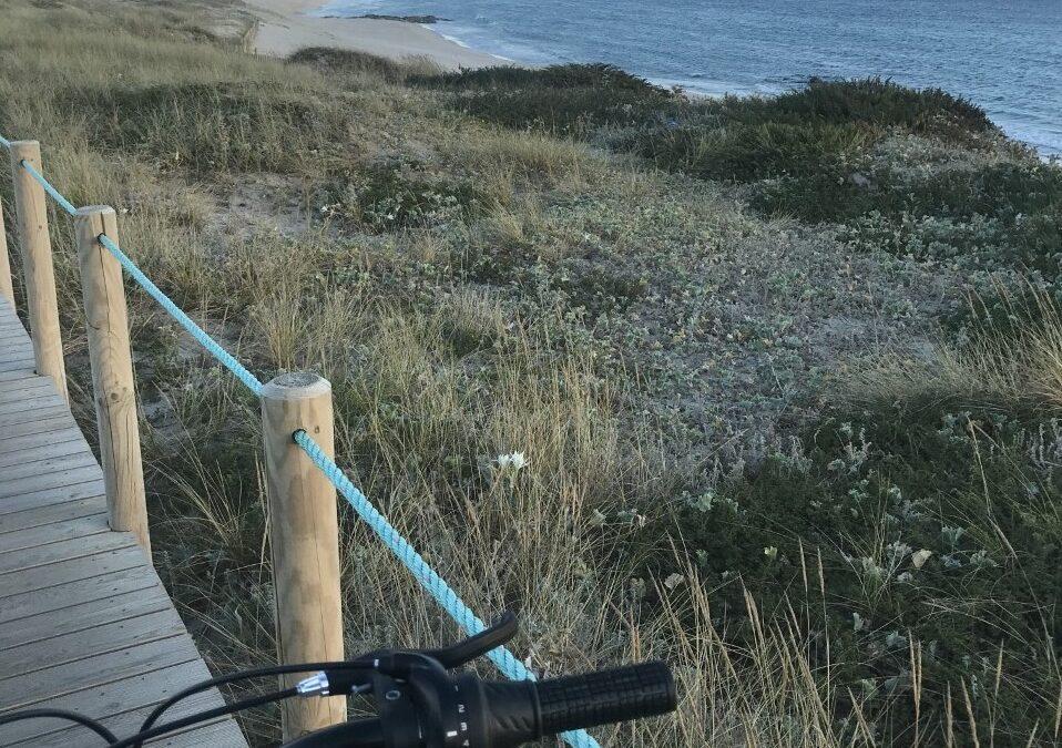 O uso da bicicleta, por miúdos e graúdos